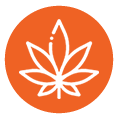 SDS Management for Cannabis Producers by Chemscape Safety Technologies